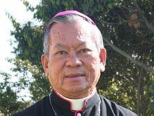 越南:教廷委任河內總教區新助理主教