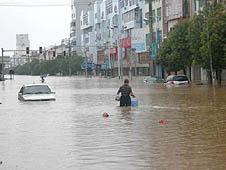中國天主教慈善團體與地方教會援助災民