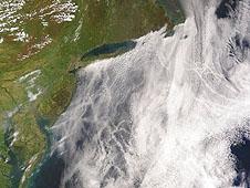 美國環保團體呼籲天主教徒為氣候克己