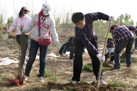 甘肅沙塵暴減少,教會協助農民終有收成