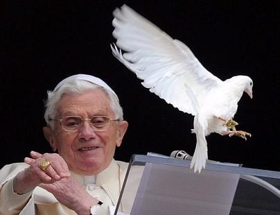 教宗為明年世界和平日選定主題