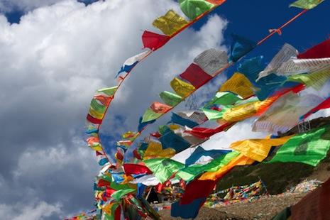 青海都蘭縣未滿十九歲藏僧被迫還俗