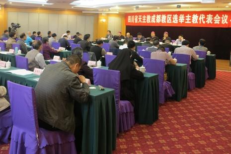 教廷批准成都候任主教,京推民主辦教及強化管理教友村