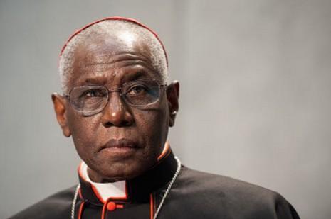 【特稿】聖禮部長回應教宗有關聖事相通的說話