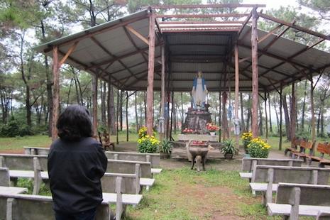 越南本篤會因伐林指控被傳召,院長指案件圖詆毀修會
