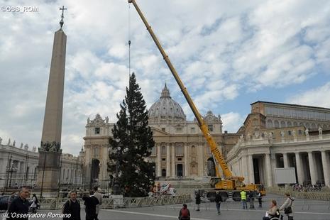 【博文】在梵蒂岡的聖誕樹下