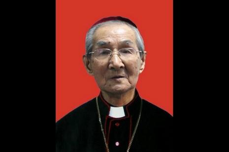 蒲圻教區涂世華主教安息,愛國主教的非法身分未寬免 thumbnail