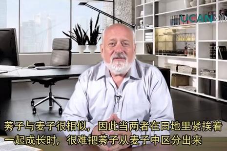 【視頻講道】 常年期第十六主日(甲年)2017.07.23