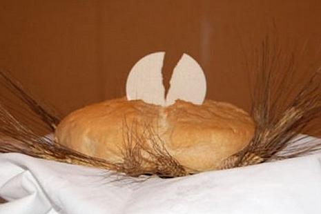 禮儀及聖事部:應對彌撒使用的麵餅和酒的質量加以監護