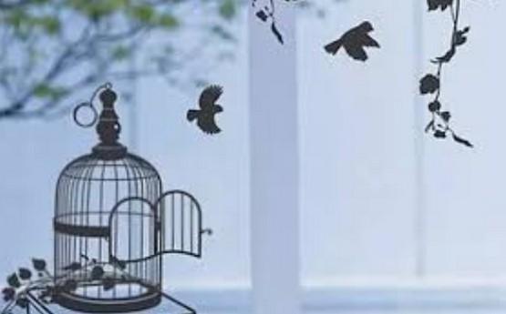 【博文】鳥籠與耶穌的故事