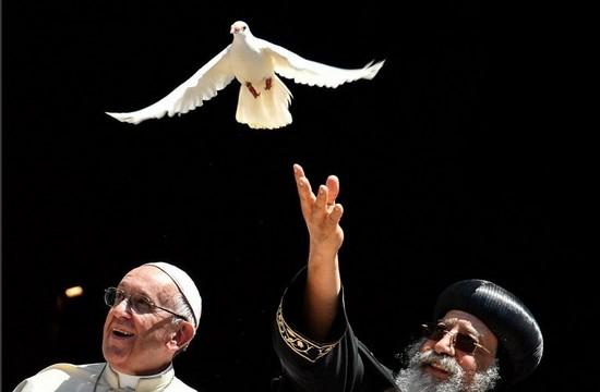 教宗主持合一會議並呼籲中東和平
