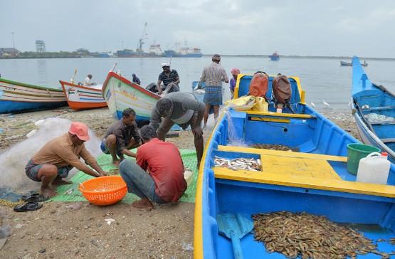 【特稿】印度漁民成為喀拉拉邦水災中的英雄