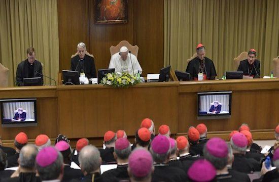 在梵蒂冈举行的历史性峰会上,教宗承认神职人员犯的恶行
