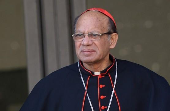 印度樞機涉隱瞞性侵個案遭調查,總教區否認指控